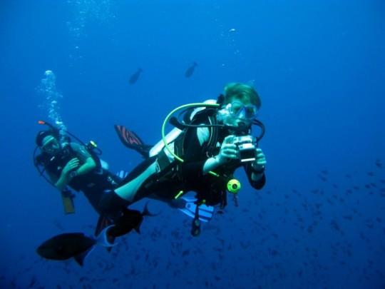 dykning gitte